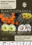 Kaktuszmánia – plakát
