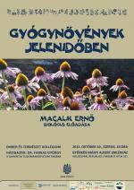 macalikerno_gyogynovenyek_plakat_k.jpg